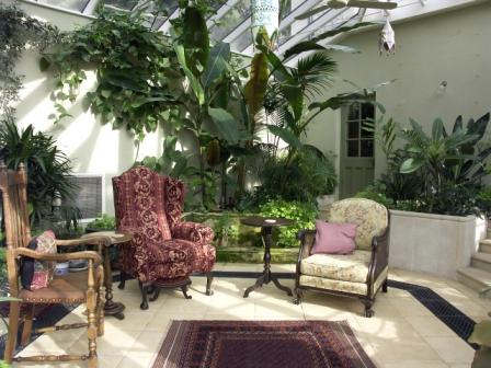 Orangeries - Inside View of an Orangery Showing Exotic Plants